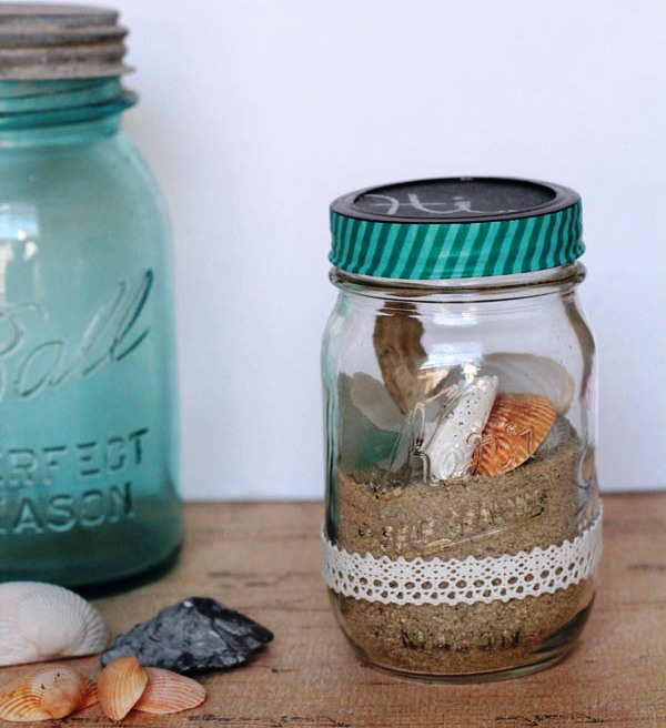 seashell-terrerium